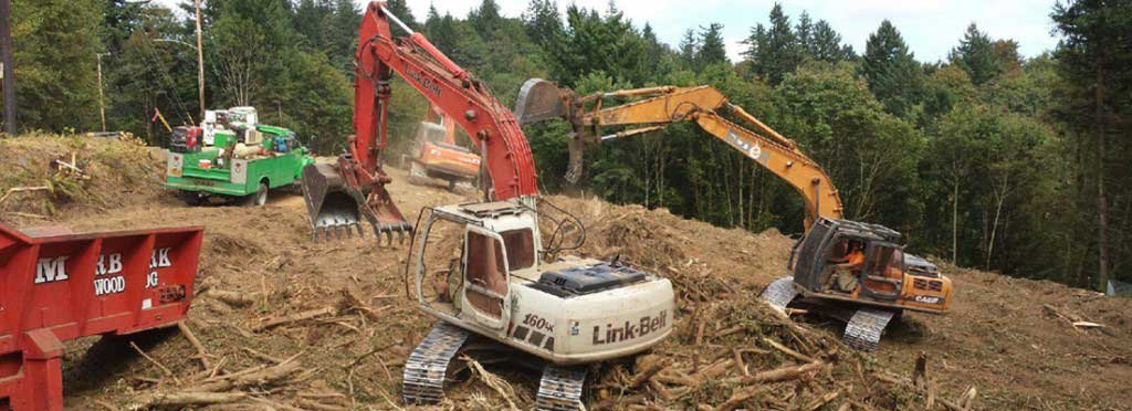 land-clearing