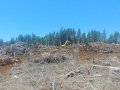 mr-tree-on-site-commercial-lot-clearing