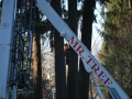 On location residential tree cutting services using crane equipment in Portland Oregon
