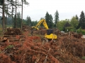 Using commercial equipment for tree clearing services