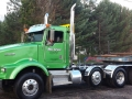 Commercial green truck and equipment used on tree service on location
