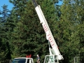 On location tree service using commercial lift equipment