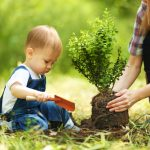 How to Make Tree Planting a Kid-Friendly Activity