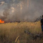 Steps to Take if You Encounter a Wildfire