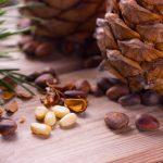 The Best Tips to Harvest Pine Nuts