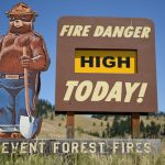 5 Ways to Prevent Forest Fires
