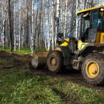 What's Included in Commercial Tree Service