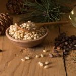 5 Facts About Harvesting Pine Nuts