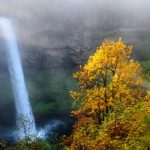 Find the Best Fall Colors in Oregon