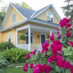 5-low-maintenance-landscaping-ideas-for-your-portland-oregon-yard