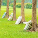 fertilizing-your-trees-in-the-pacific-northwest