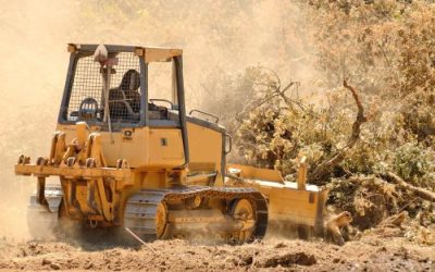 How Much Does Land Clearing Cost?