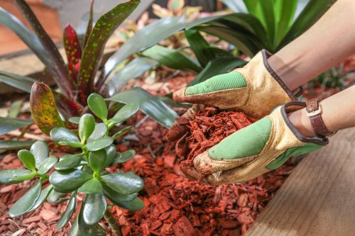 5 Creative Uses for Wood Chips in Your Landscaping