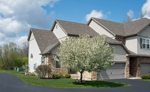 mr-tree-5-of-the-best-trees-to-plant-next-to-a-driveway-crabapple